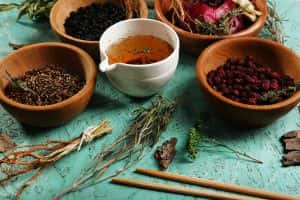 Scholarly Papers: Center for Traditional Medicine