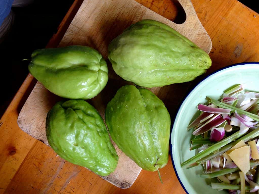 Chayote<br><span>A Simple, Ancient Vegetable</span>