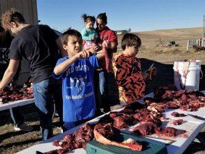 Buffalo Are the Backbone of Lakota Food Sovereignty