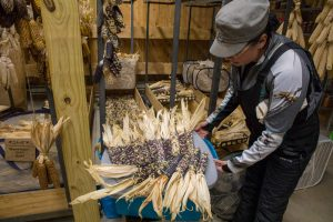 Indigenous Corn Keepers are Helping Communities Recover and Reunite With Their Traditional Foods