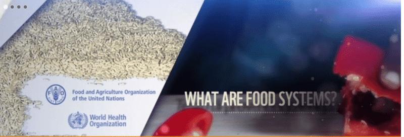 Half Humanity Malnourished